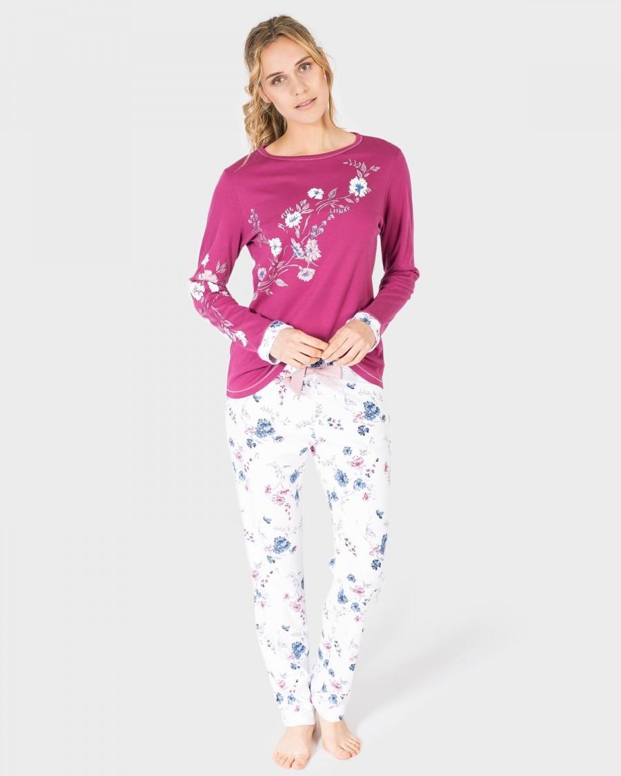 Forex en pijama registro